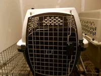 white and black pet carrier Toronto, M4C 1K4
