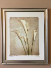 Calla lily framed canvas picture  Middlesex Centre, N0M