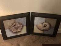 Lot of 3 Shell picture frames  Roseville, 95747