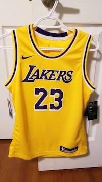 Lebron James Lakers Jersey - nike Pickering