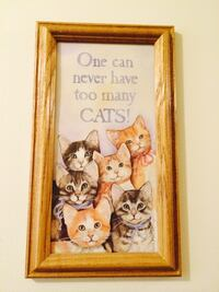 one can never have too many cats Bethlehem township, 18020