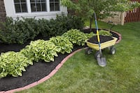 Rosales Landscaping LLC BRIDGEPORT