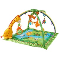 Fisher-price Jungle Rainforest activity system Hampton, 23669
