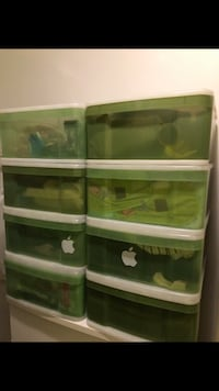 Green plastic drawers