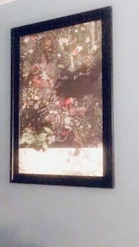 Floral picture and black frame  Hawthorne, 90250