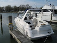 2002 Wellcraft 2600 Martinique Silver Spring