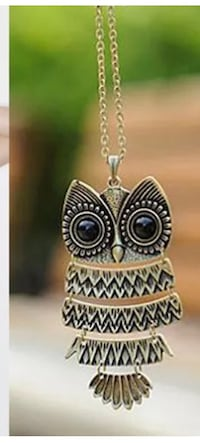 Beautiful Owl Necklace! Regina, S4X 3B6