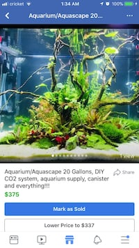Aquarium/Aquascape 20 Gallons comes with everything in the pictures! Best deal! Springfield, 65802