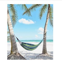 Hammock with Carrying bag Brand New
