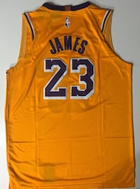 *****BRAND NEW, STITCHED, LEBRON JAMES #23 LAKERS JERSEY*****  Arlington, 22201
