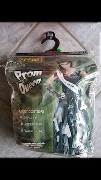 Adult prom queen costume size L/G worn once  Brampton, L6W 1V2