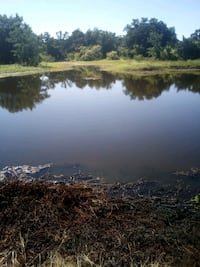 pond cleaning Caldwell