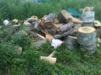 Stove wood 170.00 cord not delivered cut split Clinton, 04927