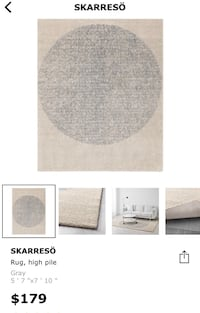 Ikea SKARRESO Carpet (original price $180) Langley, V3A 0T9