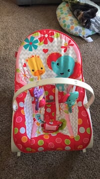 baby's multicolored bouncer