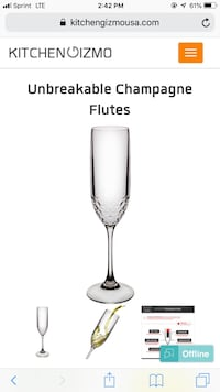 4x Unbreakeable Champagne Flutes New York, 10001
