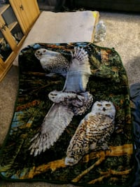 Price negotiable! Owl blanket Mount Olive Township, 07828