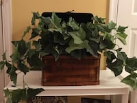Home Décor: Large Ivy Artificial Plant in wooden box with open lid  Lansdowne