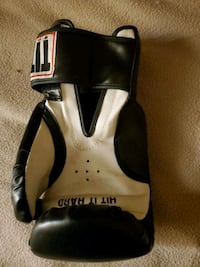Free title boxing glove. Only the right hand one.
