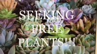 WANTED: free plants!!! Valrico, 33596
