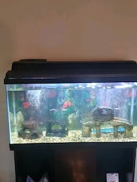 40 Gallon Fish Tank with stand.  [TL_HIDDEN]