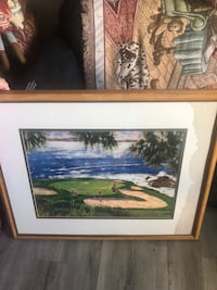 Large Golf picture/Wet stain R-Side Myrtle Beach, 29588
