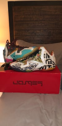 "LeBron 11 ""what the"" size 11 Clovis, 93611"