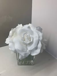 Beautiful White Flower in Vase