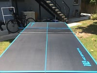 Indoor / Outdoor Ping Pong Table