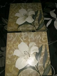 white and brown floral pictures Palm Bay, 32905