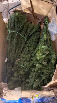 National tree 12ft Brand new