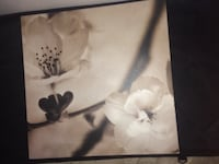 white and black flower painting Columbus