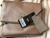 WORTH 300$ CELINE DION HANDBAG BRAND NEW Montréal, H1S