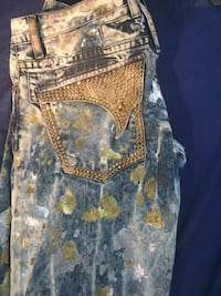 Gold and Silver Painted Robin Jeans Detroit, 48209
