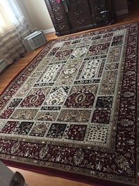 Brand new rug 10 by 8
