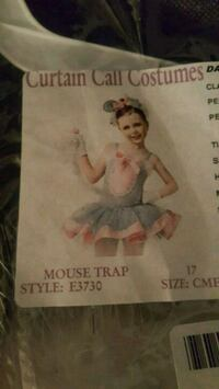 Mouse costume Reno, 89506