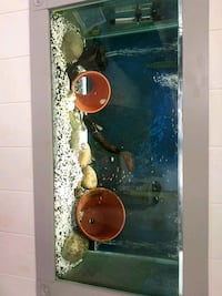 90 gallon full set up Inkster, 48141
