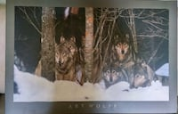 Art Wolfe Photography - Wolf Pack Boreal Canada Mounted On Wood Oakville