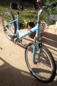 blue and gray Raleigh hardtail mountain bike