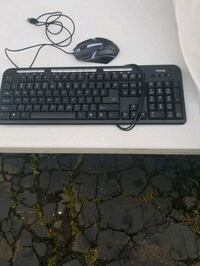 Computer keyboard and gaming mouse  Dunmore
