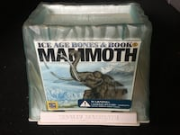 Ice Age Mammoth Fossil Model and Information Book