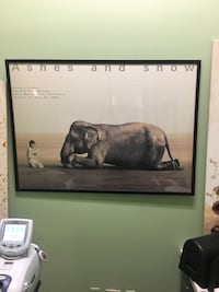 Elephant and boy painting