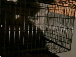 Dog-cat-rabbit animal cage