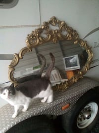 Over sofa mirror approx 4ft wide 2 1/2ft tall excellent cond