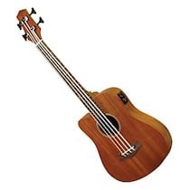 Bass Guitar (Left Handed / Acoustic-Electric)
