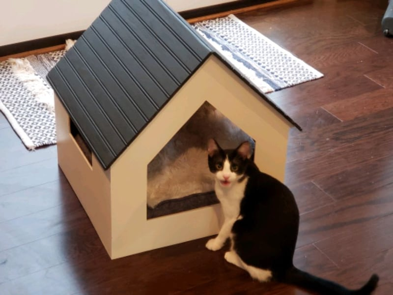 Pet house e3552172-bb11-4faa-88b1-845d40d447c9