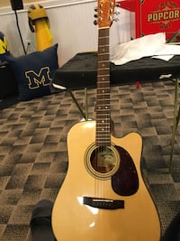 Zager easy play guitar signed by the builder.  Livonia, 48152