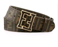Fendi Brown Belt with Gold Buckle Houston, 77074