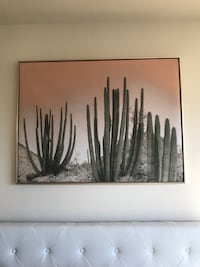 Cacti wall art  Arlington, 22202