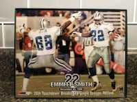 Emmitt Smith And Michael Irvin 8×10 photo in frame Norfolk, 23518